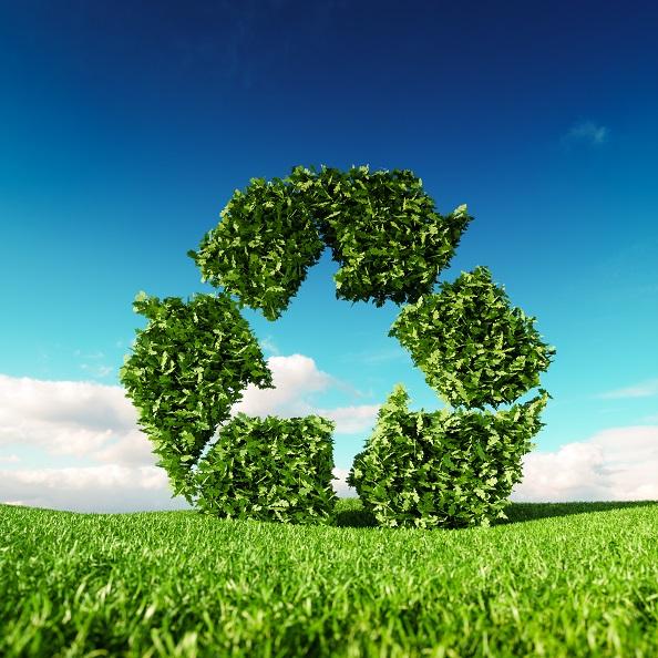 Indigo Environmental